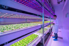 indoor farm inhabitat green design innovation architecture
