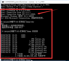 cgi si鑒e social web安全 第8页 backup