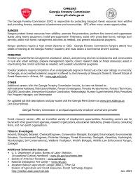 Gis Resume Sample by Plain Text Resume Template It Resume Imagerackus Unique Examples