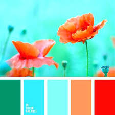 matching color schemes colors that match turquoise springup co