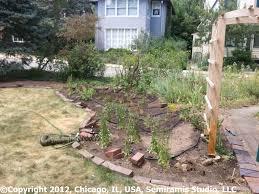 the rain garden project u2013 semiramis studio llc