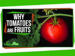 why tomatoes are fruits and strawberries aren u0027t berries youtube