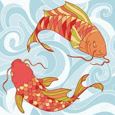 catfish stock photos royalty free catfish images and pictures