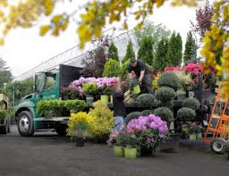 hicks nursery we deliver plants trees garden shrubs and more