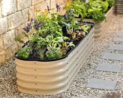 backyard small vegetable garden grow a small vegetable garden
