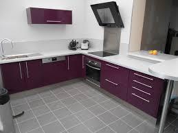 cuisine aubergine et gris stupéfiant cuisine aubergine et gris idee deco pour cuisine et