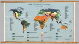 World Map 1975 by World Biogeographical Provinces David Rumsey Historical Map