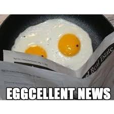 Egg Meme - trending current events eggcellent news egg eggs cooking