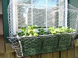Vegetable Garden Netting Frame by Views From The Garden Keep Deer Birds Cats Dogs Or Rabbits