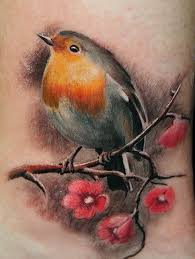 25 unique robin bird tattoos ideas on pinterest robin tattoo