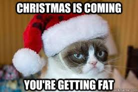 Grumpy Cat Memes Christmas - christmas is coming you re getting fat its grumpy cat christmas