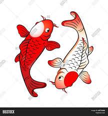 koi fishes yin yang japanese flag vector u0026 photo bigstock