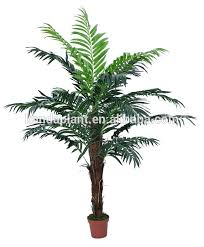 ornamental plants with name ornamental plants with name suppliers