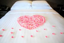 white honeymoon petals of roses on a white honeymoon bed stock image image of