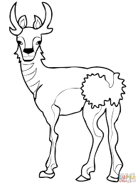 reindeer printable coloring pages north american pronghorn coloring page free printable coloring pages