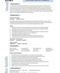 Chef Resume Example Sap Project Manager Resume Excel Head Custodian Resume Sample