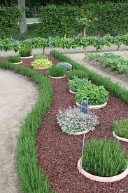 want a neat herb garden plant in pots in the ground like they