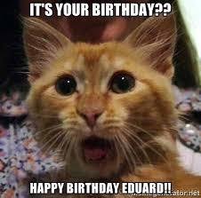 Cat Meme Generator - birthday cat meme generator 28 images birthday memes this just