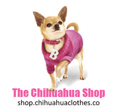 chihuahua sweaters chihuahua clothes on the chihuahua accessories and
