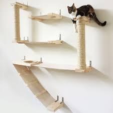 the roman cat fort catastrophic creations