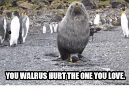 Walrus Meme - you walrus hurt the coneyou love memes com love meme on me me