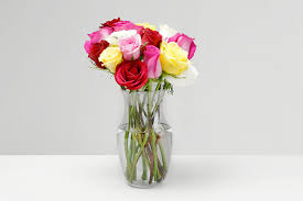 Putting Roses In A Vase How To Make Flowers Last Longer 9 Tricks Proflowers