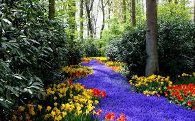 top collection of spring wallpapers spring desktop wallpaper free