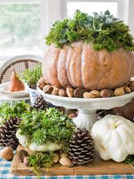 thanksgiving pumpkin decorations how to craft a succulent topped pumpkin centerpiece hgtv