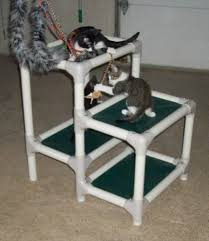 Cat Gyms Cat Tower Kuranda Dog Beds