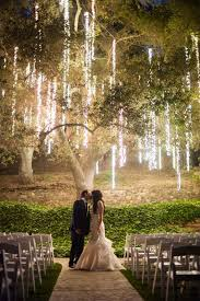 outdoor tree lights for summer charming hanging lights on tree for outdoor wedding party lighting