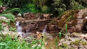 Water Rock Garden by Reflections Water Gardens