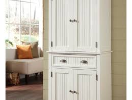 Dvd Storage Cabinet With Doors Cabinet Gratifying Storage Cabinet With Pull Out Shelves