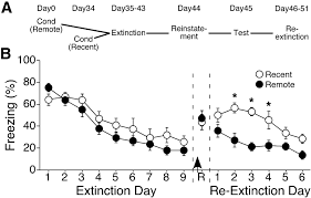 extinction of remotely acquired fear depends on an inhibitory nr2b