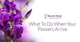 Flowers Killeen Tx - caring061217 png t u003d1497302962