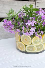 4641 best gardening u0026 flowers images on pinterest flowers