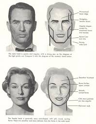 illustration art on the difficulty of drawing women u0027s faces
