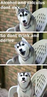 Pun Dog Meme - moon moon the pun dog by shandymae07 meme center