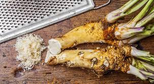 qu est ce que le raifort cuisine le raifort un condiment oublié aux vertus médicinales bio à la une