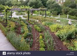 urban vegetable and herb garden at the brooklyn botanic garden