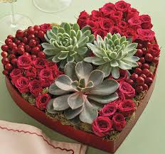 alternative valentine s day gifts easy valentine s day gift idea succulents