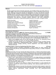 Executive Officer Resume Chief Financial Officer Resume Resume For Your Job Application