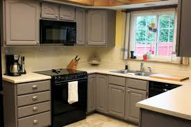 Grey Painted Kitchen Cabinets Home Design - Painting kitchen cabinets gray