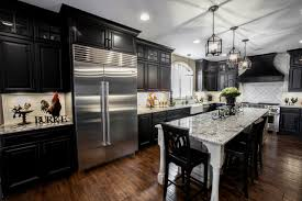 Black Cabinet Kitchen Interior Design Contemporary Kitchen Design Idea By Shiloh