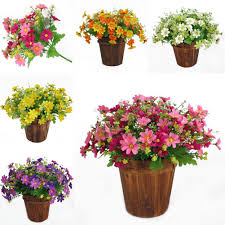 compare prices on daisy party decorations online shopping buy low