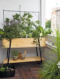 gem se pflanzen balkon balkon fertig bepflanzen und begrünen das manufactum gartenjahr