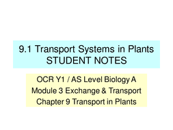 new ocr a level biology transport in plants by henrikhanson