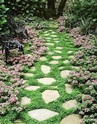 Rock Garden Cground Ground Cover For Garden Rock Garden Ground Cover Plants Cottage