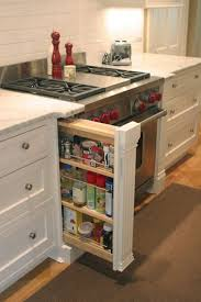 Narrow Pull Out Spice Rack Storage For That Narrow Spot Between Stove And Wall I Now Need