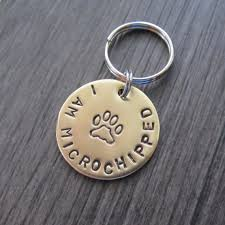 baby dog tags dog tags this i am microchipped brass dog tag is a must for
