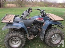 bluetick coonhound puppies for sale in ohio 1 male u0026 1 female akc u0026 ukc bluetick coonhound puppies available